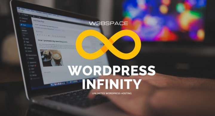 Wordpress Infinity